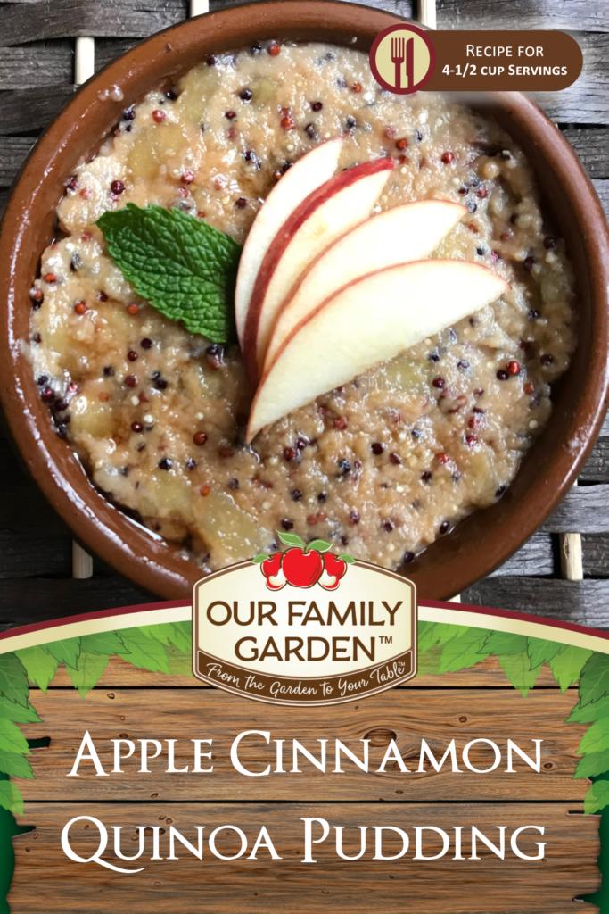 Apple Cinnamon Quinoa Pudding
